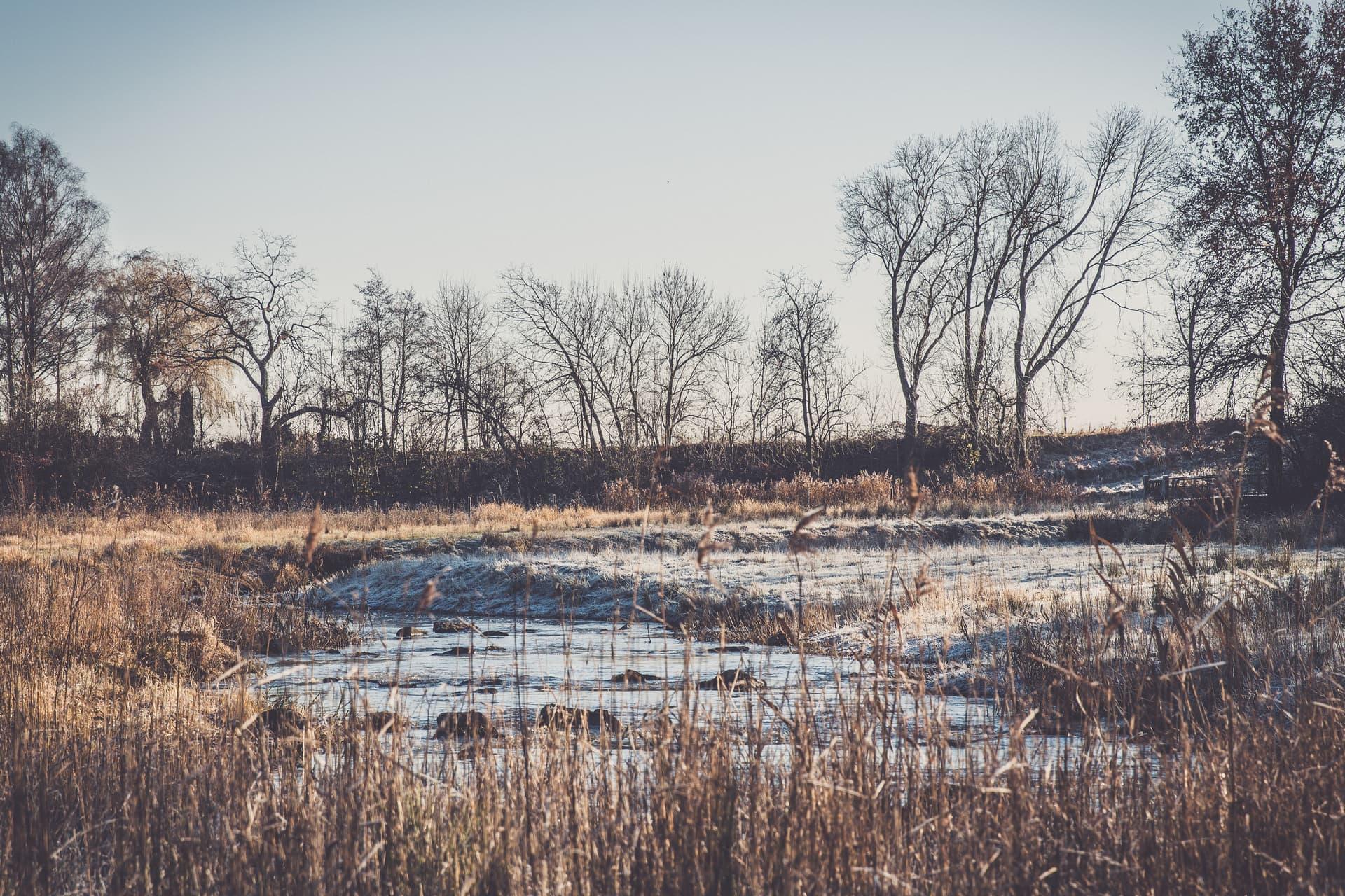 Winters tafereel aan de Neerbeek in Neer.