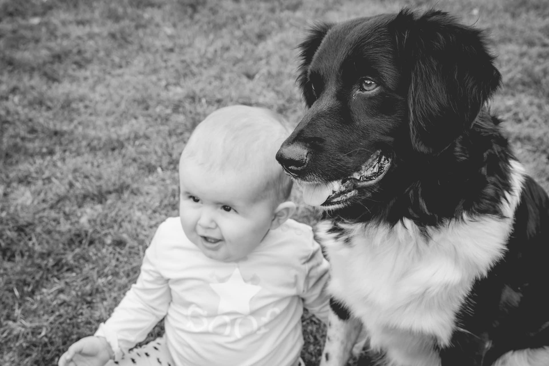 Babyshoot met hond